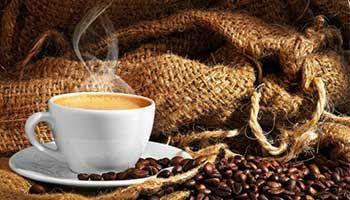 Einführung in Kaffee