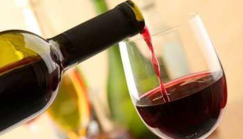 Einführung in Wein
