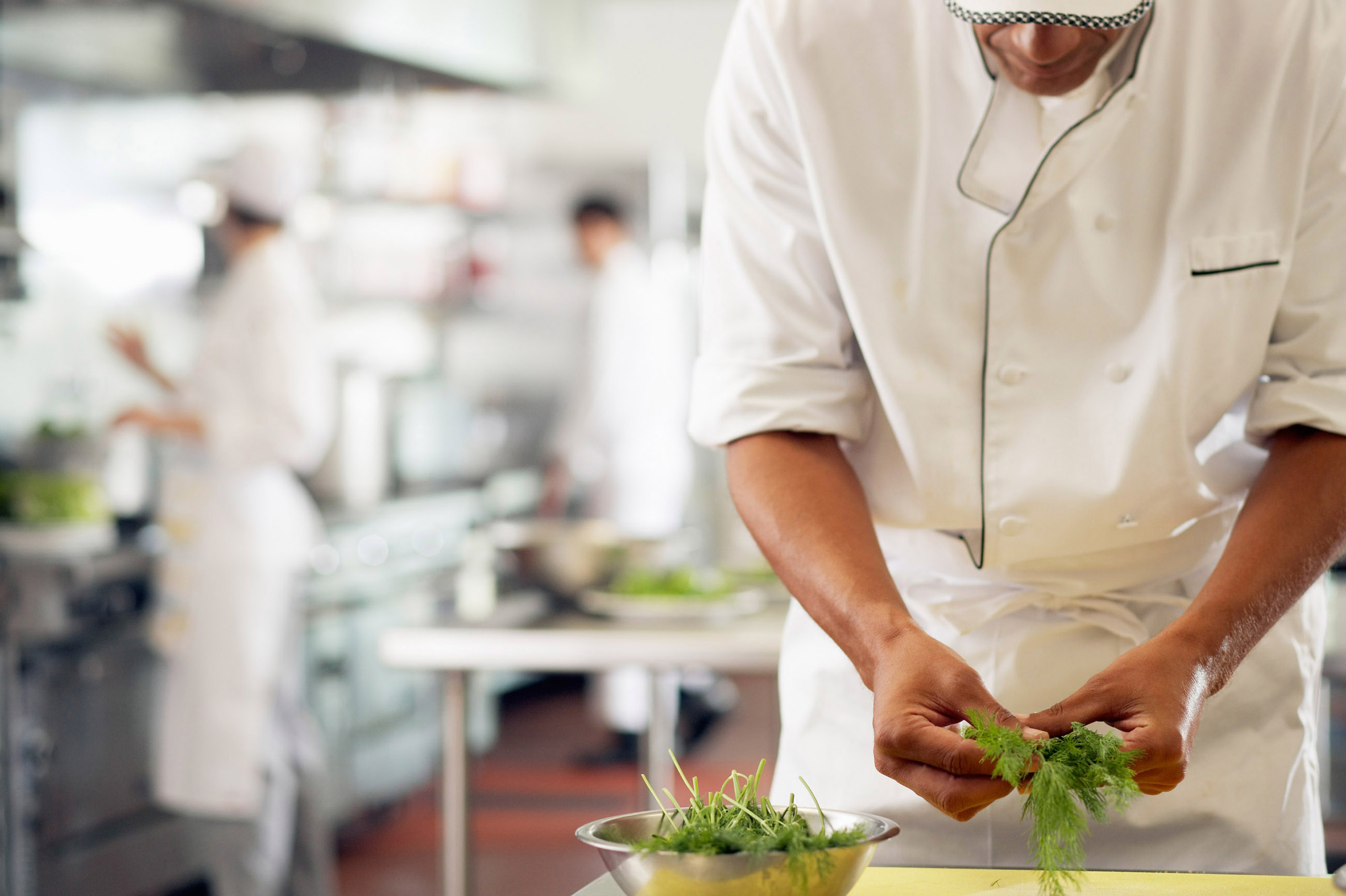 professional kitchen skills course - The Training Terminal
